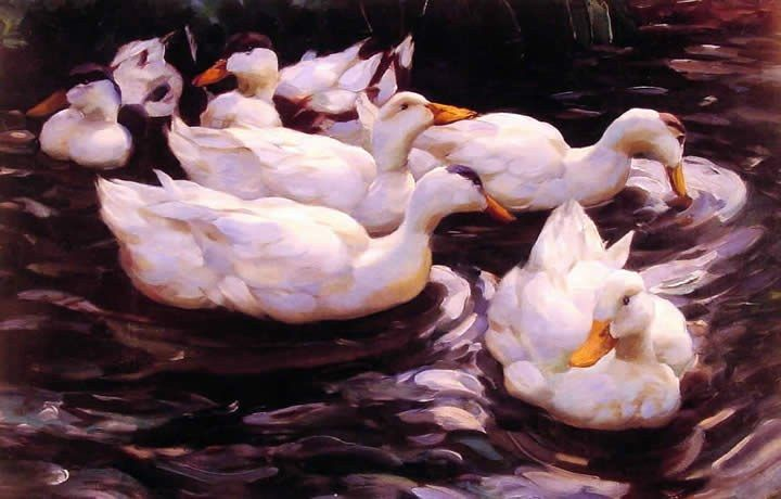 Alexander Koester Six Ducks in a Pond