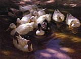 Alexander Koester Eleven Ducks in the Morning Sun painting