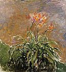 Claude Monet Hamerocallis painting