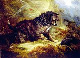 George Armfield A Terrier and a Hedgehog painting