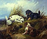 George Armfield Terriers painting