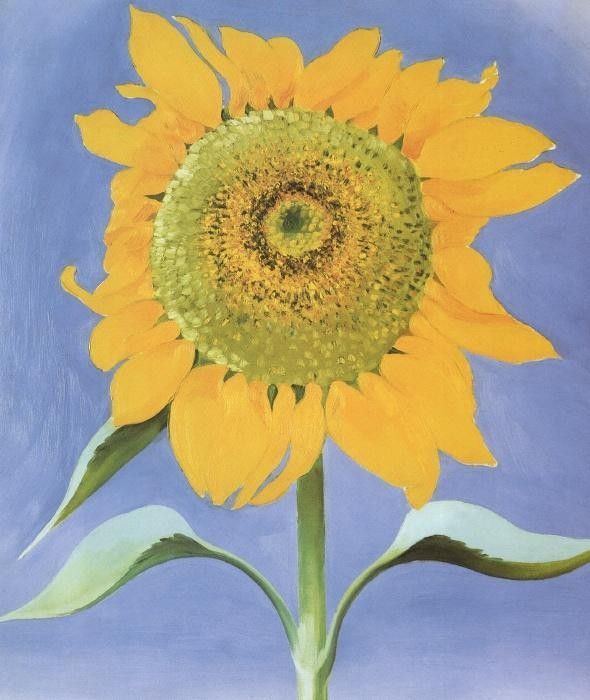 Georgia O'Keeffe Sunflower, New Mexico 1935