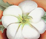 Georgia O'Keeffe White flower on Red Earth No. 1 painting