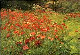 Floral paintings - In Poppyland by John Ottis Adams