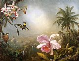 orchids and hummingbird Canvas Prints - Orchids, Nesting Hummingbirds and a Butterfly