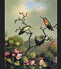 Martin Johnson Heade Ruby Throat of North America painting