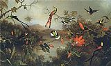 Martin Johnson Heade Tropical Landscape with Ten Hummingbirds 1870 painting