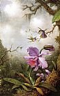 Martin Johnson Heade Two Hummingbirds and a PinkOrchid painting