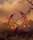 Martin Johnson Heade Two Hummingbirds with Their Young painting