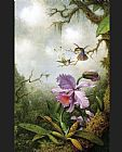 orchids and hummingbird Canvas Prints - Two Hummingbirds with a Pink Orchid