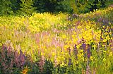 Shirley Novak Yellowstone Meadow painting
