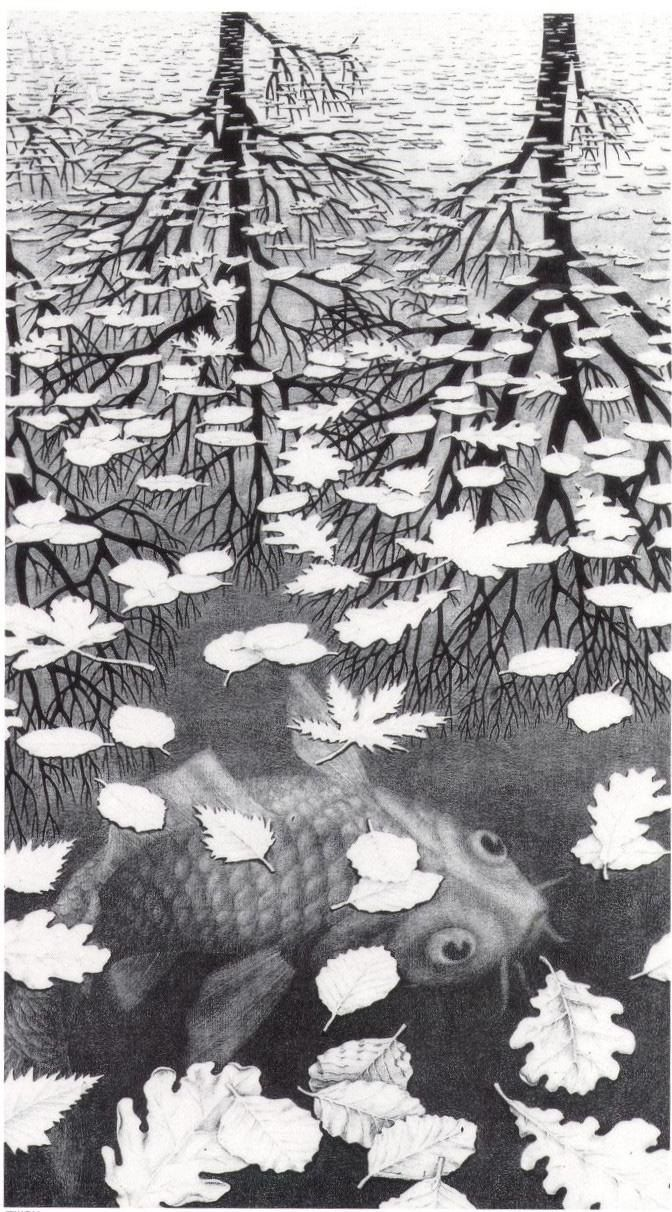 Unknown MC Escher Three Worlds