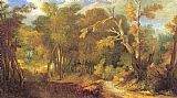 Unknown Wooded Landscape painting