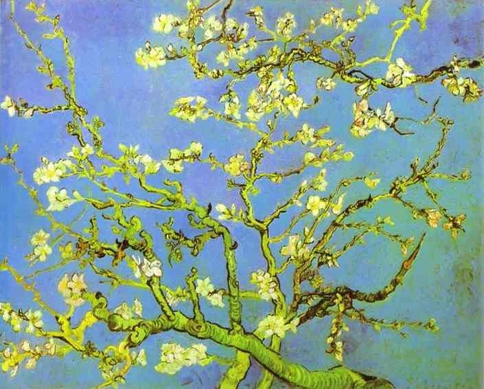 Vincent van Gogh Branches of Almond tree in Bloom