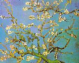 Floral paintings - Almond Branches in Bloom by Vincent van Gogh