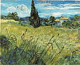 Vincent van Gogh Green Wheat Field with Cypress painting