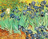 Floral paintings - Irises by Vincent van Gogh