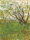 Vincent van Gogh Orchard in Blossom 1 painting