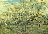 pear tree Paintings - Orchard with Blossoming Plum Trees