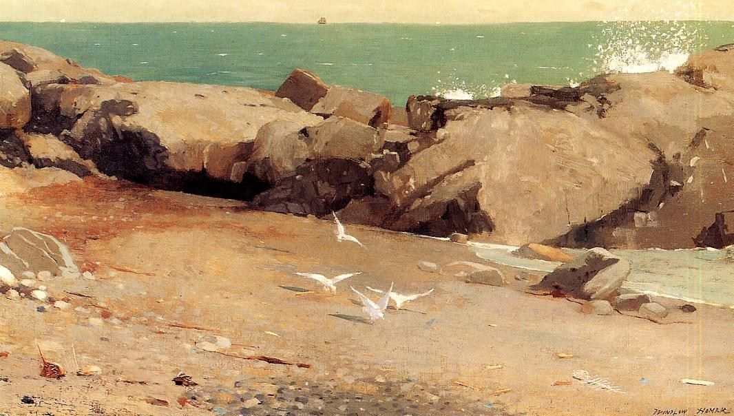 Winslow Homer Rocky Coast and Gulls