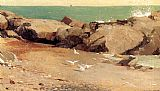 Winslow Homer Rocky Coast and Gulls painting