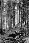 Ivan Shishkin Stream by a Forest Slope painting