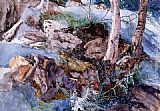 John Ruskin Study of the Rocks and Ferns, Crossmouth painting