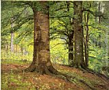 Theodore Clement Steele Beech Trees painting