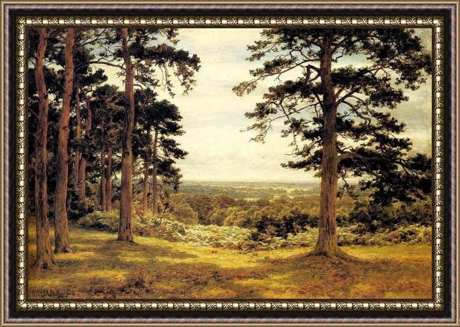 Framed Benjamin Williams Leader a peep through the pines painting