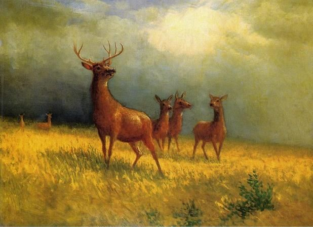 Albert Bierstadt Deer in a Field