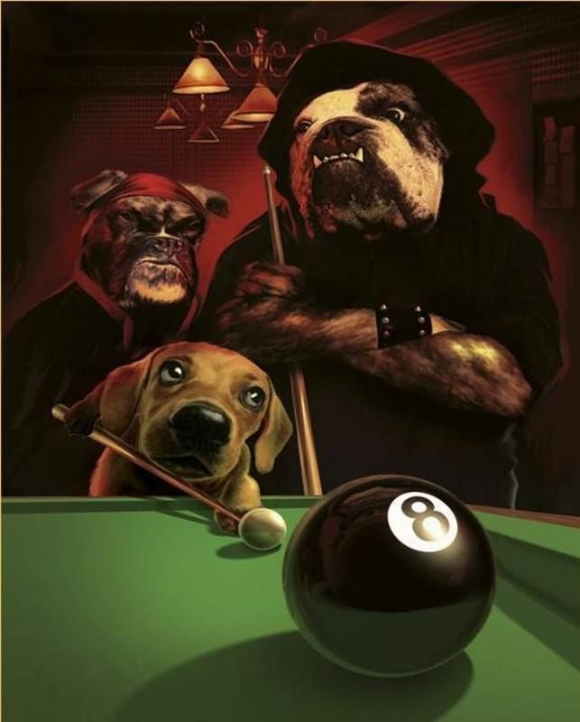 Cassius Marcellus Coolidge The Eight Ball