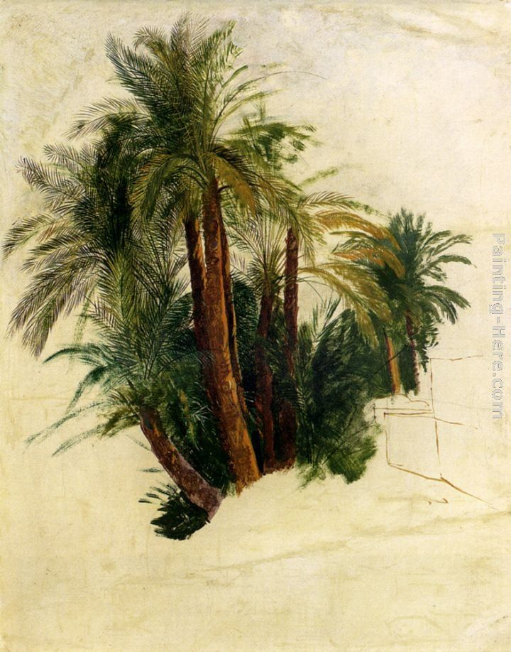 Edward Lear Study Of Palm Trees