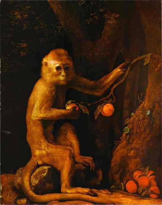 George Stubbs Green Monkey