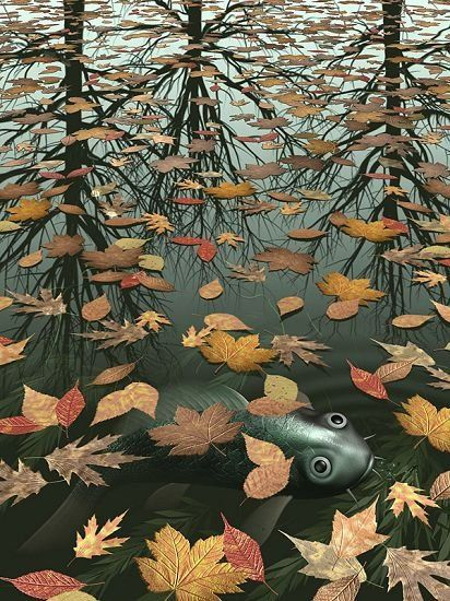 Unknown MC Escher Three Worlds I