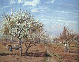 Camille Pissarro Orchard in Bloom at Louveciennes painting