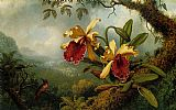 Floral paintings - Orchids and Hummingbird by Martin Johnson Heade