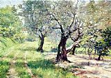 William Merritt Chase The Olive Grove painting